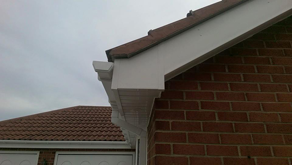Fascias After 2