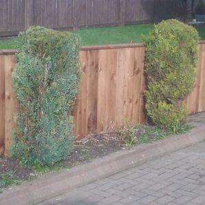 fencing.6.6